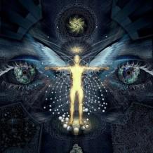 A reinkarnációról….